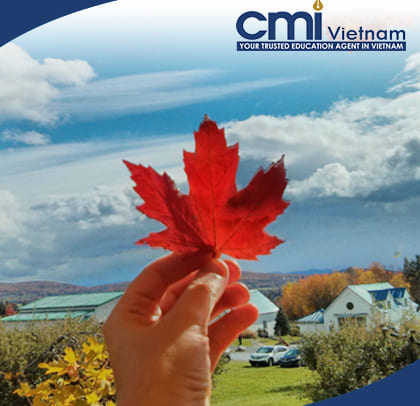 trien-lam-du-hoc-mua-xuan-2018-cmi-vietnam